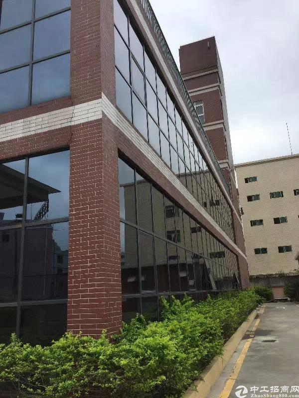 龙华红本厂房改造办公室180㎡起分租