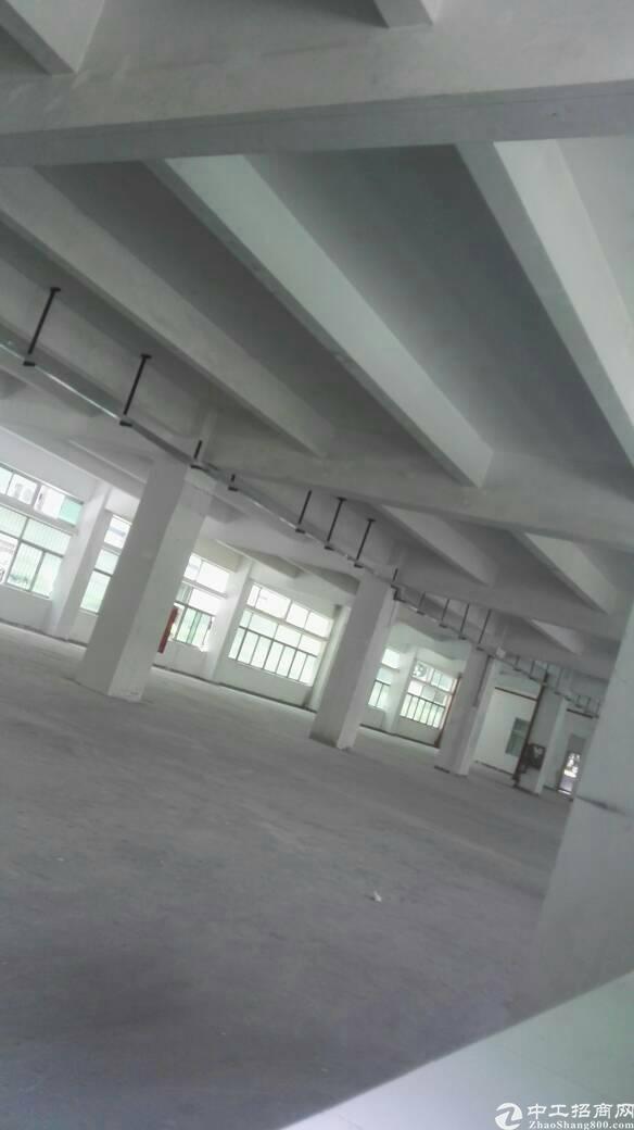 布吉联创科技园新出一楼1700平标准厂房出租