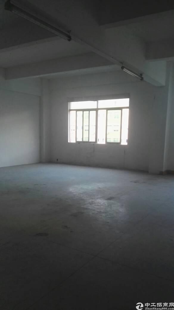 布吉早禾坑工业区新出180平标准厂房出租-图8
