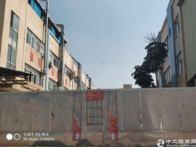 道窖靠厚街标准楼房出租,长度120米,