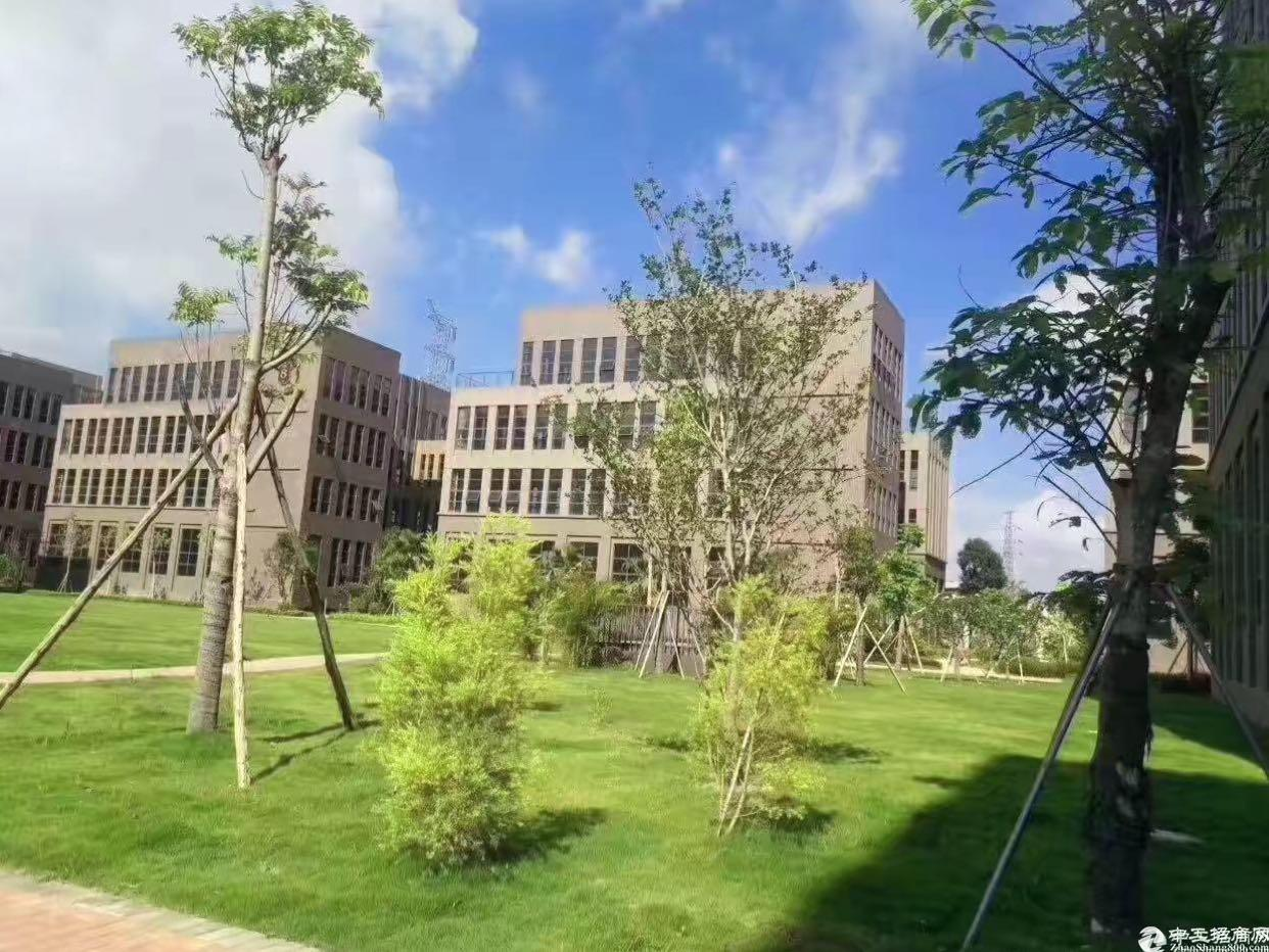 布吉花园式红本独院20000平方大小分租低价出租-图4