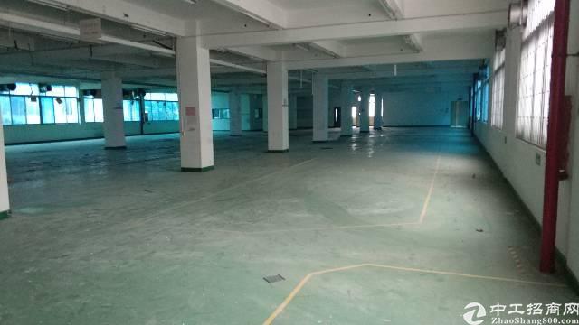 龙岗 龙岗大道零距离商业楼出租2700平米