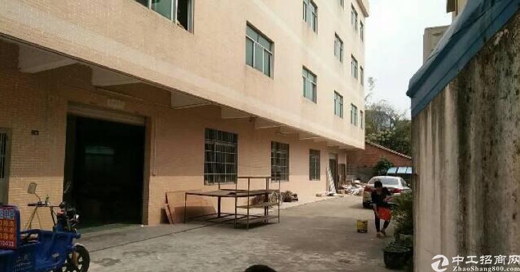 新出标准小独院3100平方低价出租
