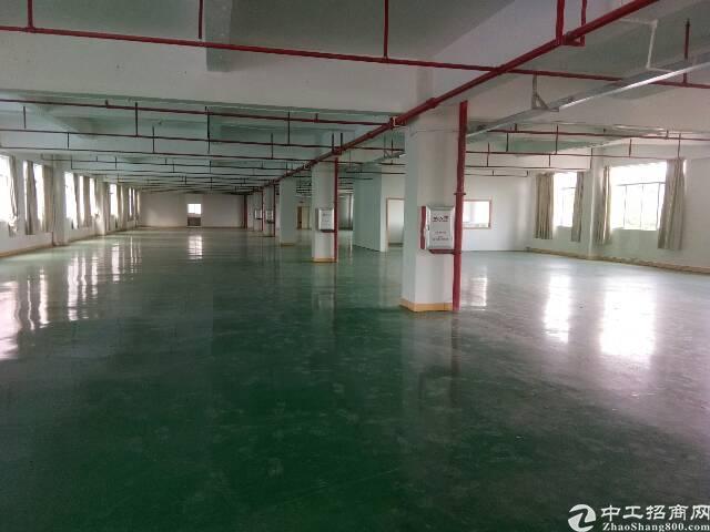 清溪镇独门独院厂房出租9000平