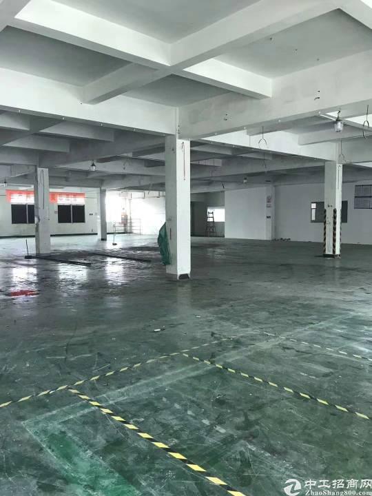 沙井沙三上下围工业区4楼2098平米,租金25元,已空!13-图4