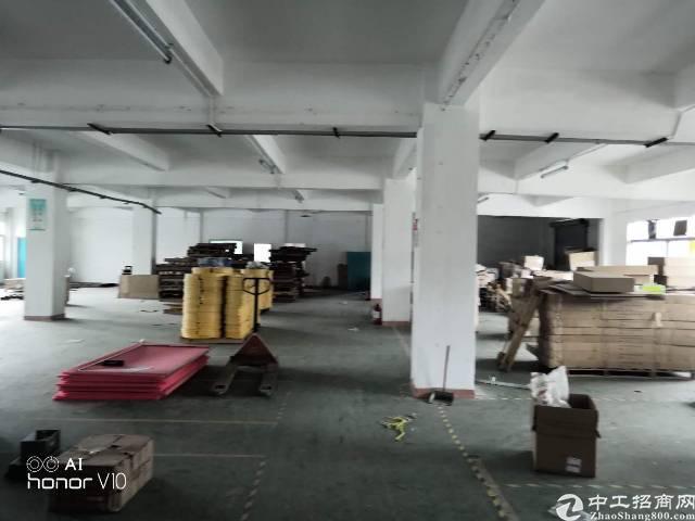 平湖华南城边上新出一楼780平方标准厂房招租-图2