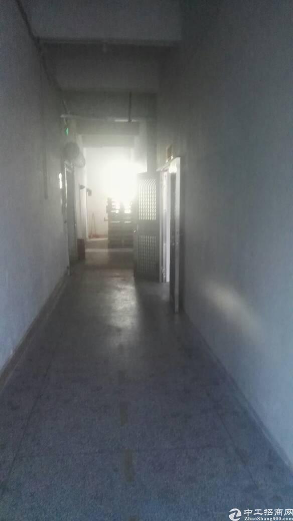 布吉早禾坑工业区新出180平标准厂房出租-图5