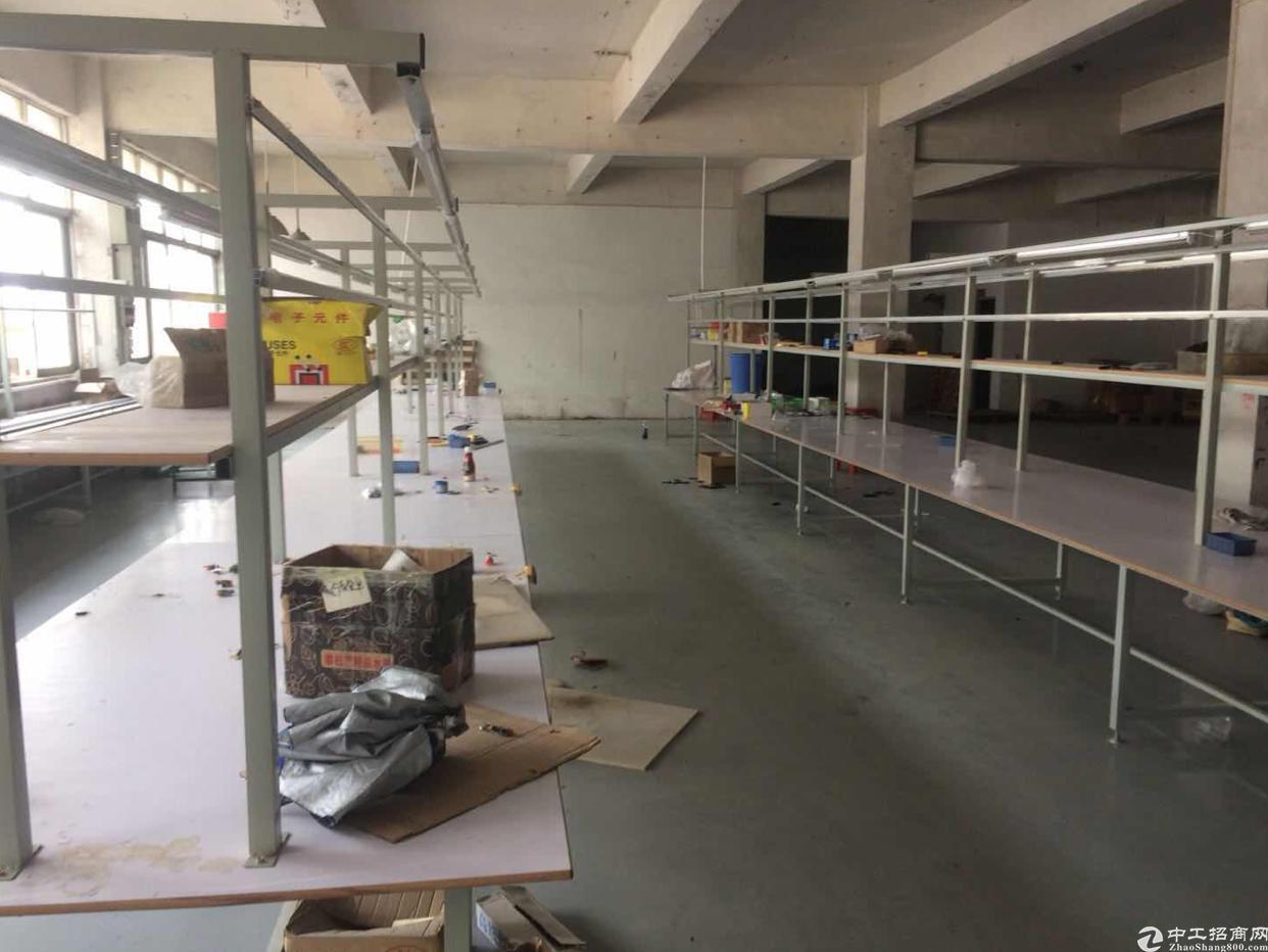 坪山  深汕路旁新出楼上630平厂房,带地坪漆