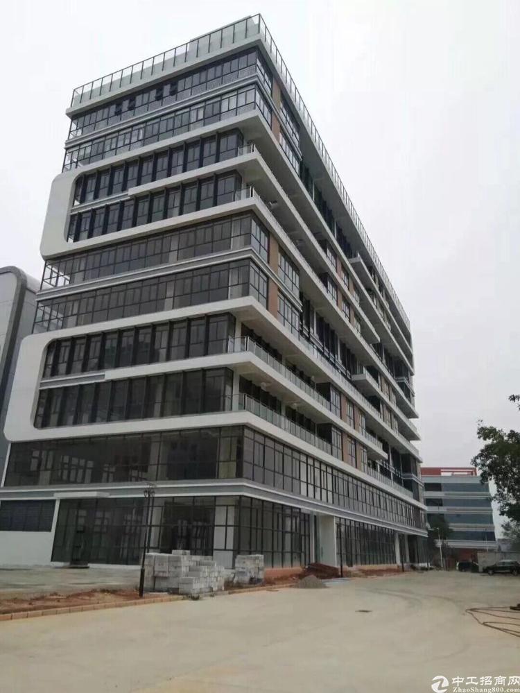 坪山大工业区新出一楼3000平标准厂房出租-图3