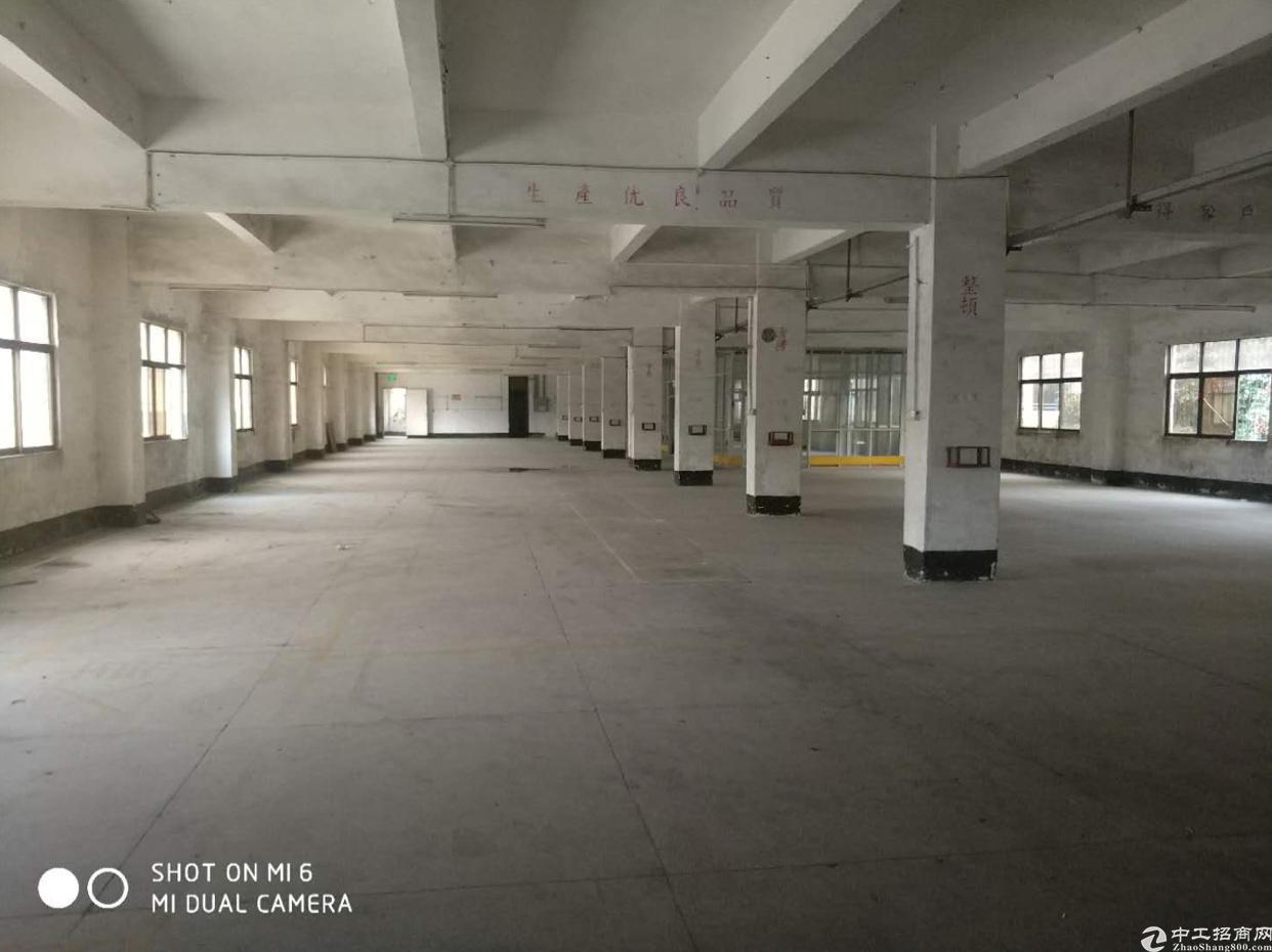 原房东厂房1000平方米分租