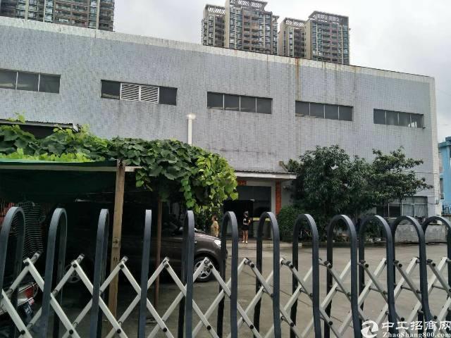 沙井107国道边万丰村3200平方10米高钢构厂房出租。