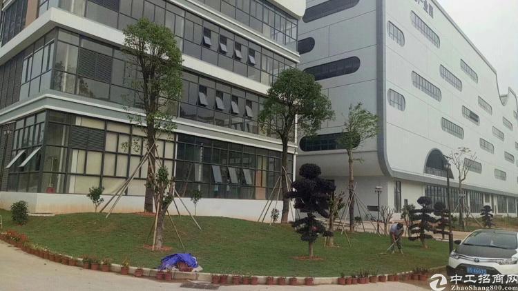 坪山大工业区新出一楼3000平标准厂房出租-图6