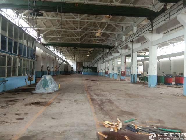 深圳观澜福民独院钢构8000平方按实际面积出租-图2