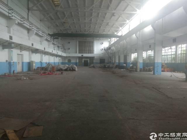 深圳观澜福民独院钢构8000平方按实际面积出租-图5