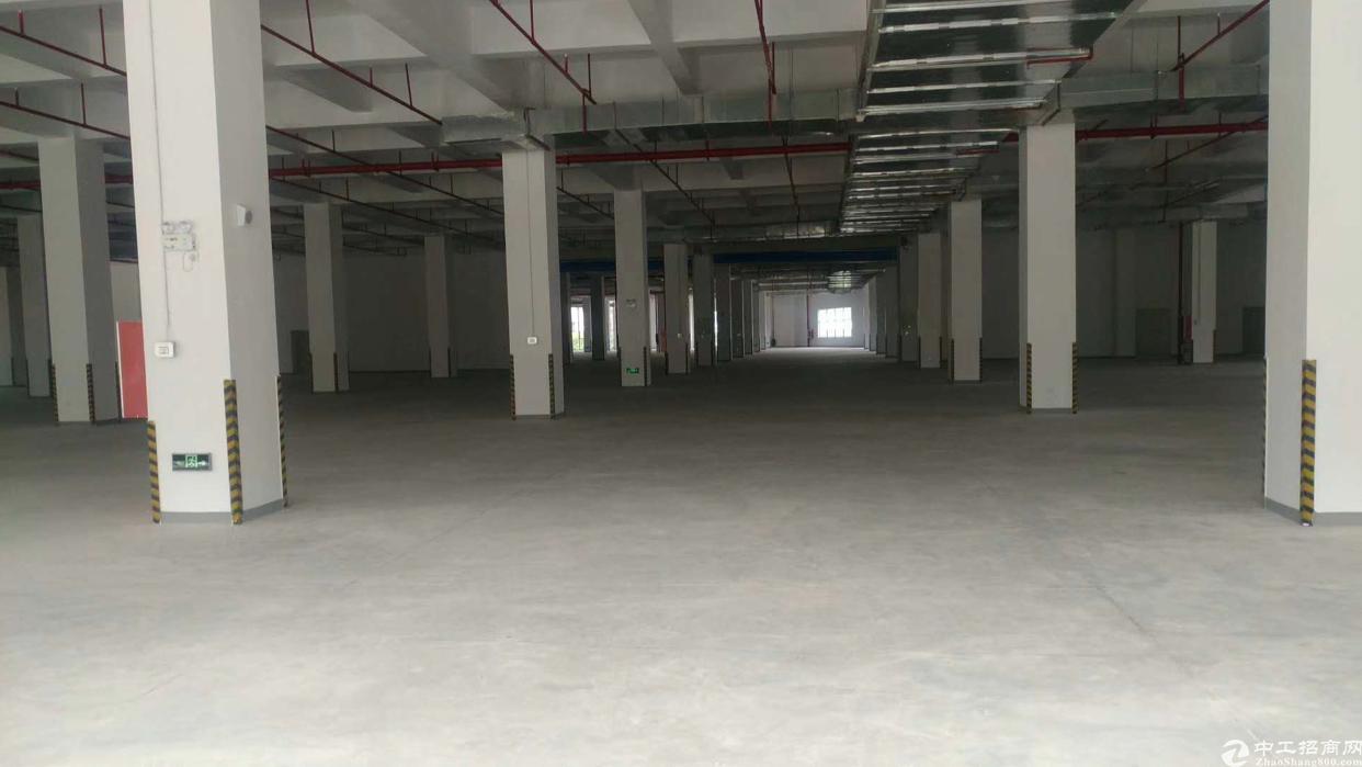 深圳智能产业园1-6层63000M带红本厂房招租-图6