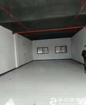 新出一楼厂房350平出租