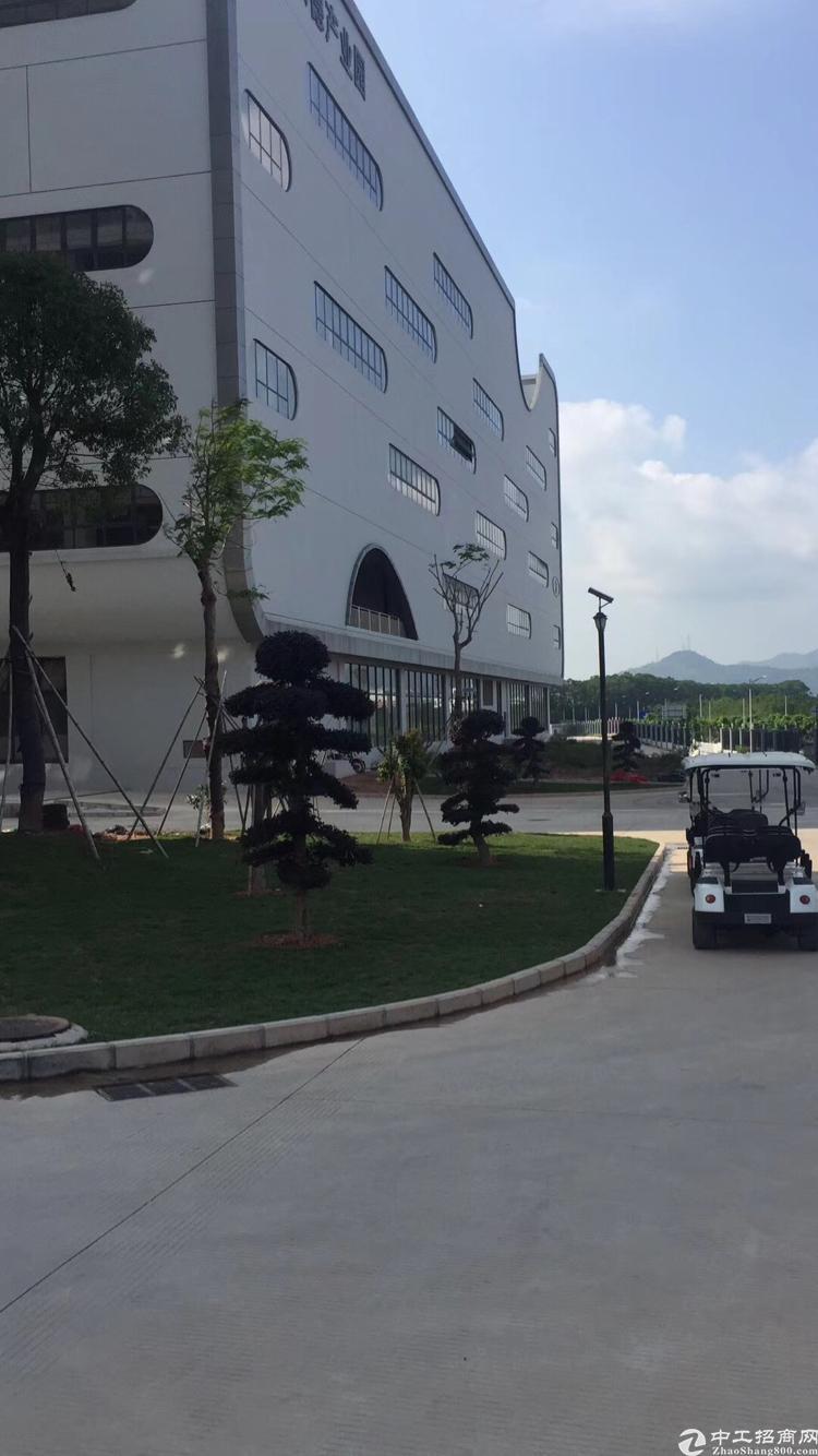 坪山大工业区新出一楼3000平标准厂房出租-图2