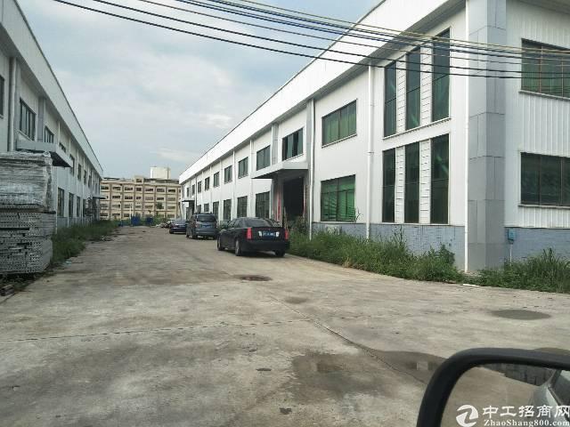 园洲一万平米独院钢构厂房出售