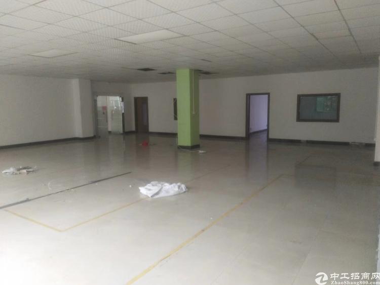 龙华区独栋厂房4260平,带精装修