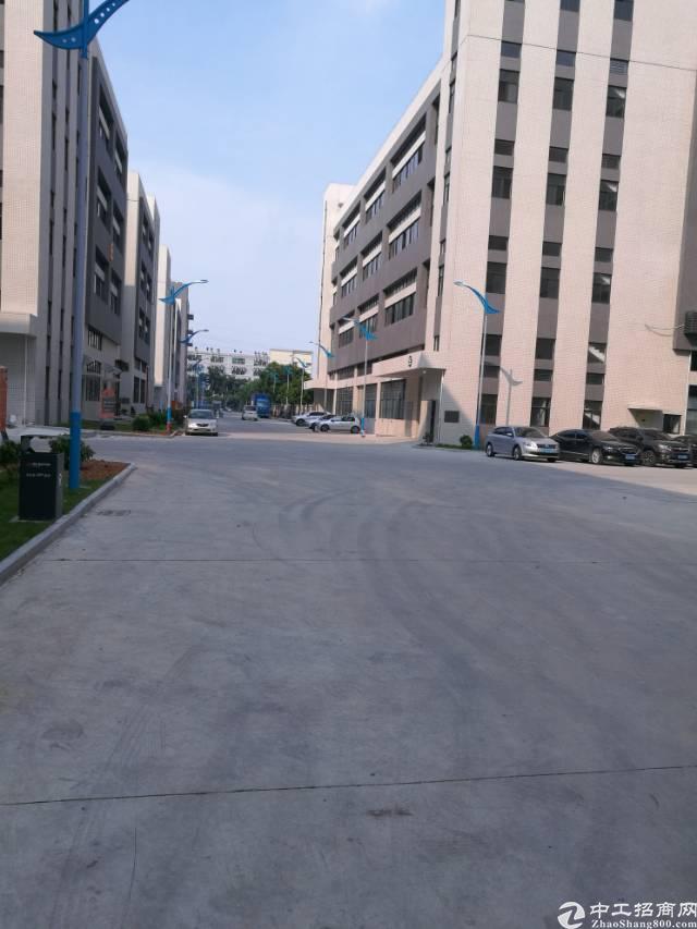 高埗镇低涌村单一层钢构厂房招租!