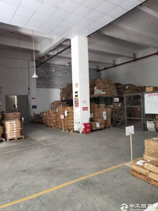 沙井共和松福大道附近新出一楼540平6米高带牛角厂房-图3