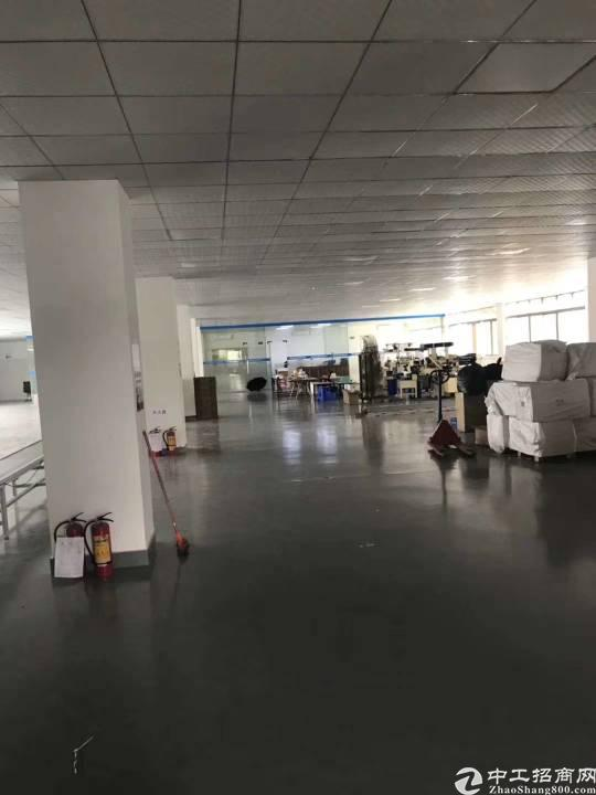 惠州市潼侨镇新出独门独院3600平超靓厂房