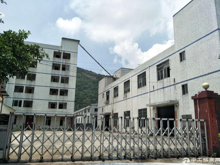 独院标准两层原房东厂房一楼6.5米高,可以做污染行业