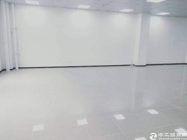 龙华大浪商业中心,精装修175平招租