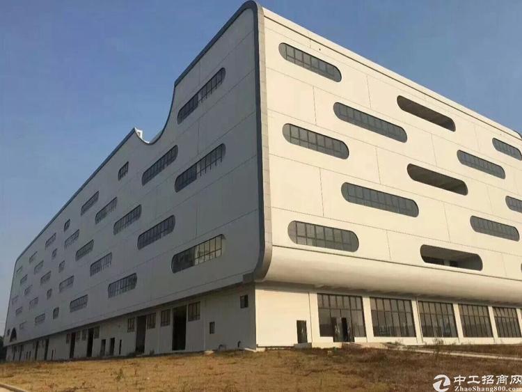 坪山大工业区新出一楼3000平标准厂房出租-图4