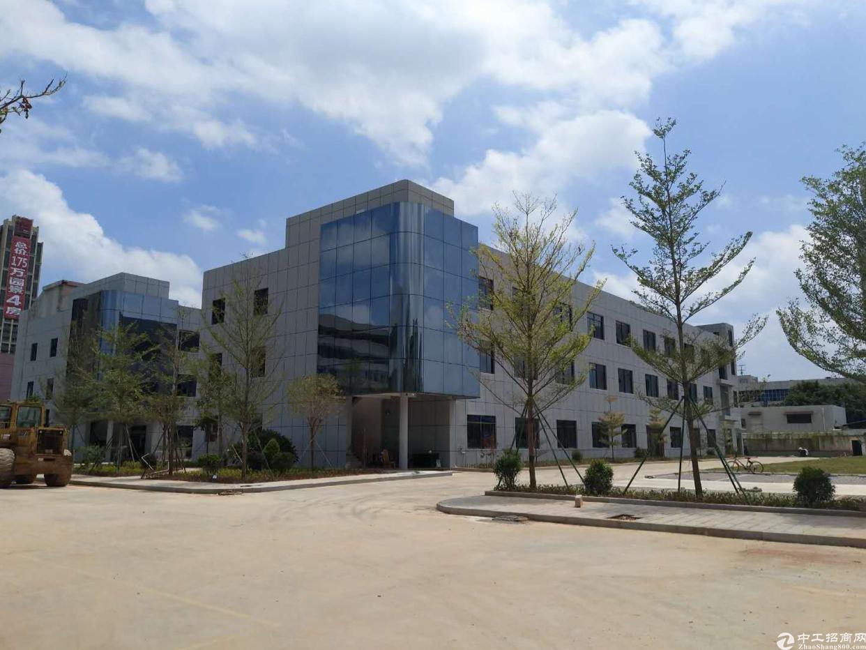 石碣镇中心城区科技企业厂房