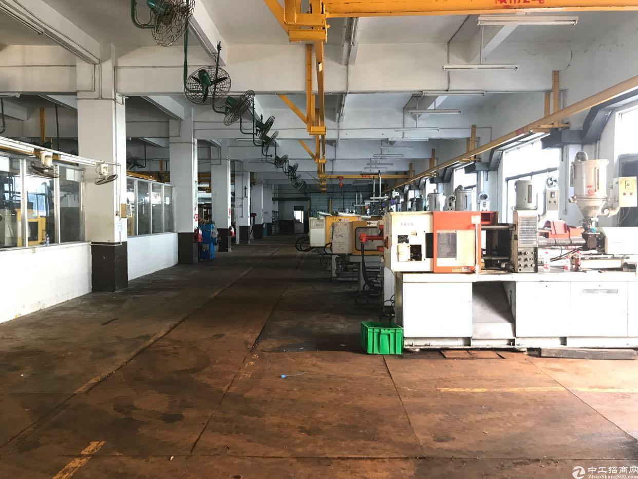横岗大康1600平带行车一楼标准厂房出租-图3