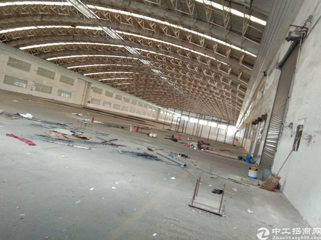 深圳观澜原房东大型物流园的靓盘16000平方钢构出租-图3
