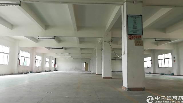 公明新出楼上原房东独院5500平米厂房低价出租