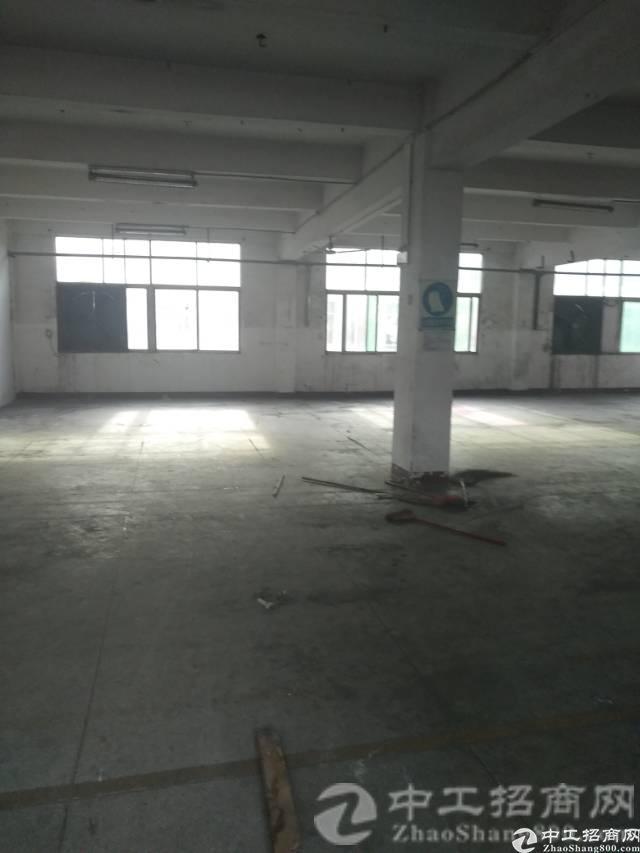 松岗山门新出楼上带装修厂房600平