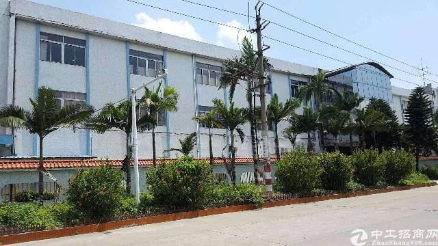万江标准厂房独门独院厂房5300平米宿舍1200平米租15