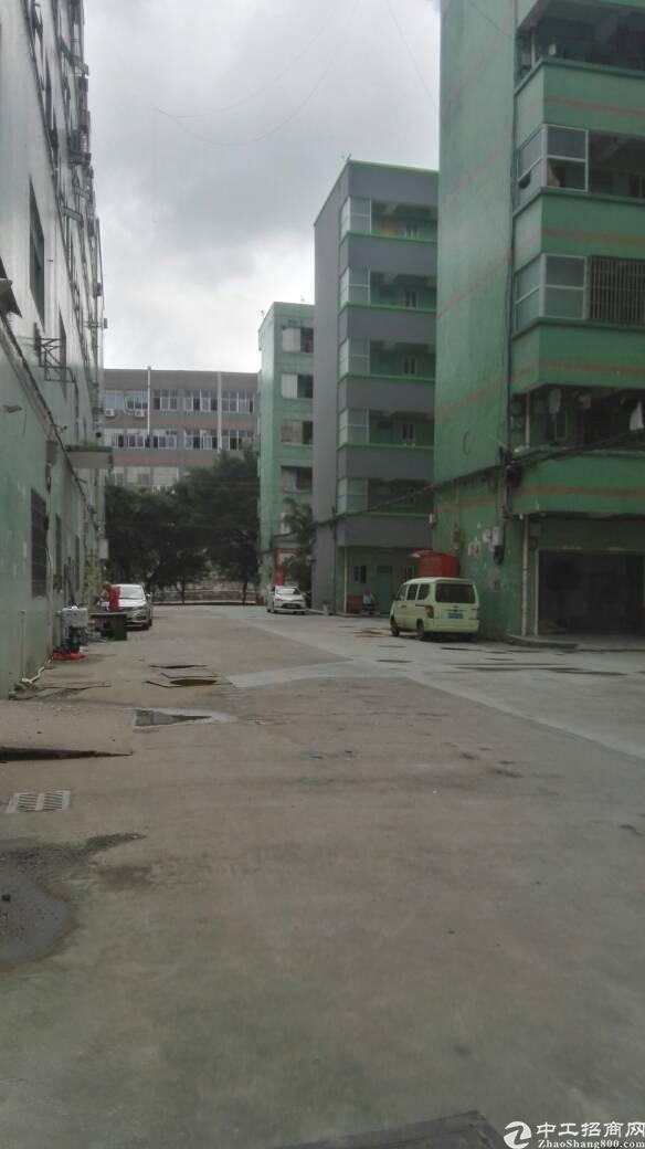 布吉秀峰工业城新出原房东700平带装修标准厂房出租
