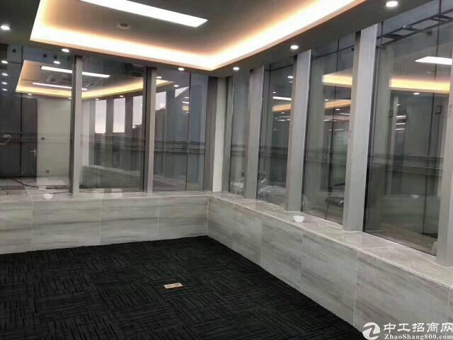 福田中心区莲花山全新精装价格只要180