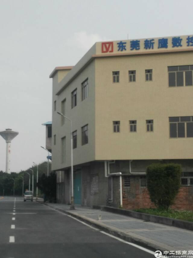 石碣占地600平建筑2700平厂房出售