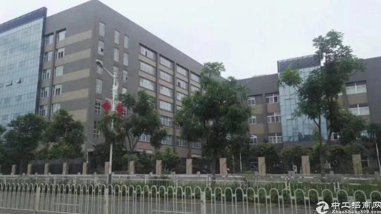 沙井大型工业园楼上新出1500平米厂房