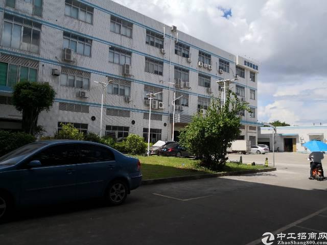 龙岗宝龙标准厂房带牛角一楼2800平高6米(可分租)