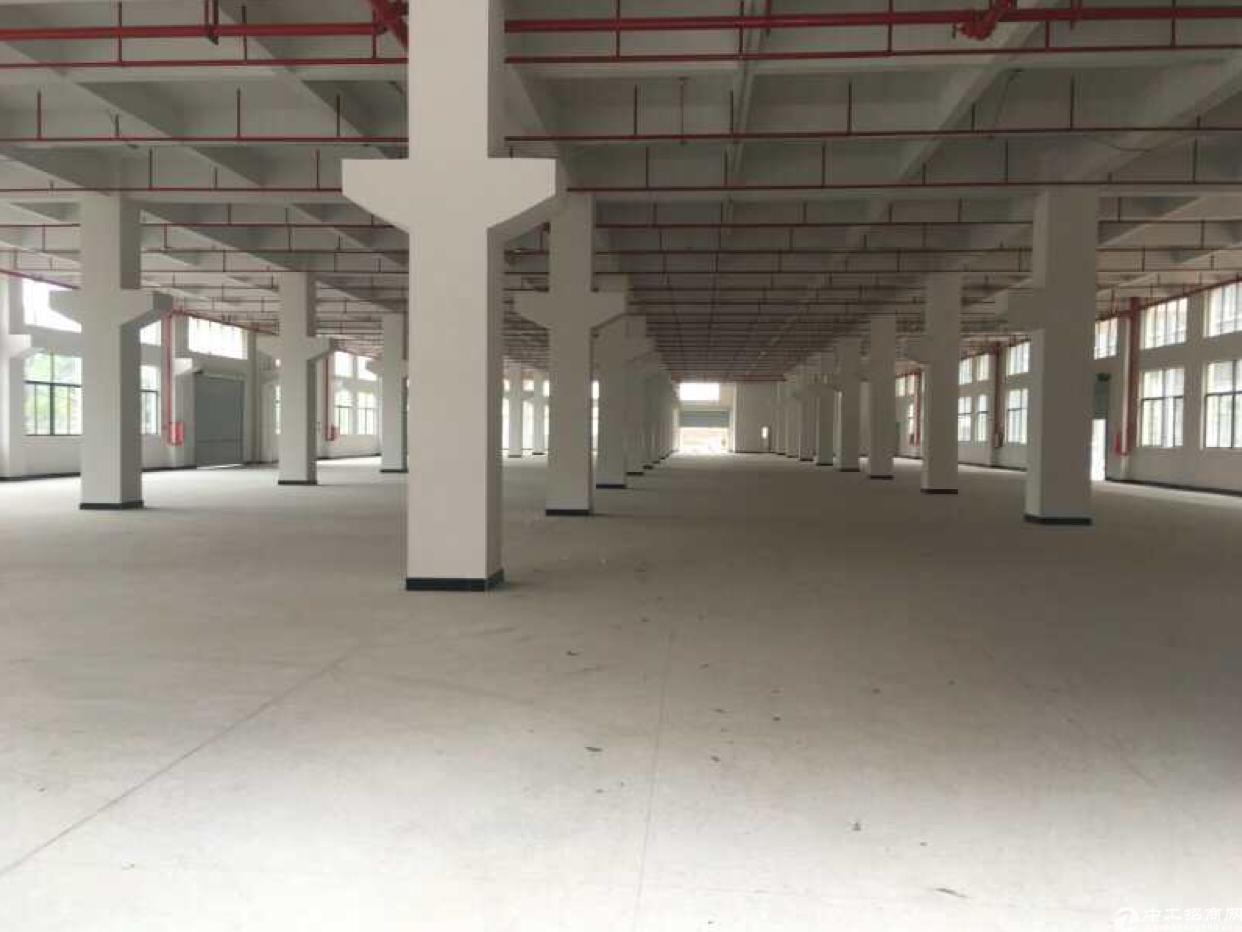 大朗新出标准厂房一楼高7米7000平全新厂房出租一楼二楼
