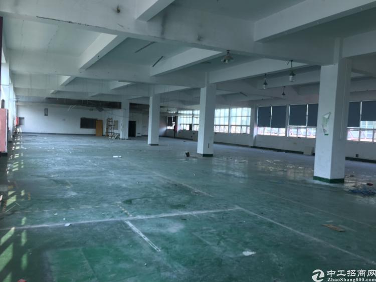 沙井西部楼上新出1000平米厂房