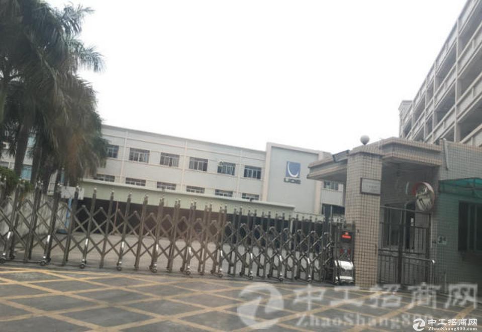 东城一楼750平方二楼1200方标准厂房分租