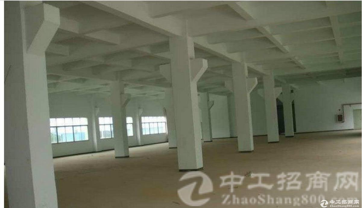 东城鳌峙塘新出一楼550平方带装修空地大厂房出租