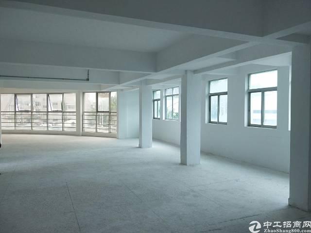 龙岗办公电商仓库厂房600平