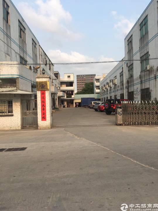 松岗大田洋新出单一层厂房3700平高度十米空地超大