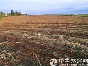 合肥产业新城发展区工业用地土地出售