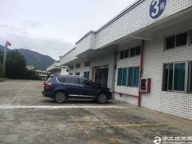 西乡九围独栋钢构一楼2000平方出租