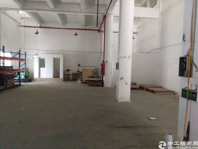 沙井新出一楼700平米厂房出租