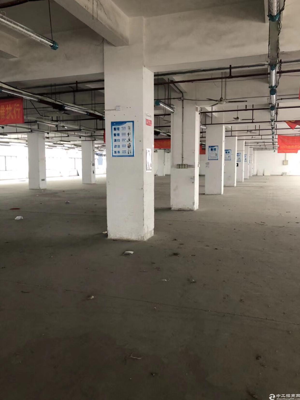 布吉秀峰工业城4000平厂房出租